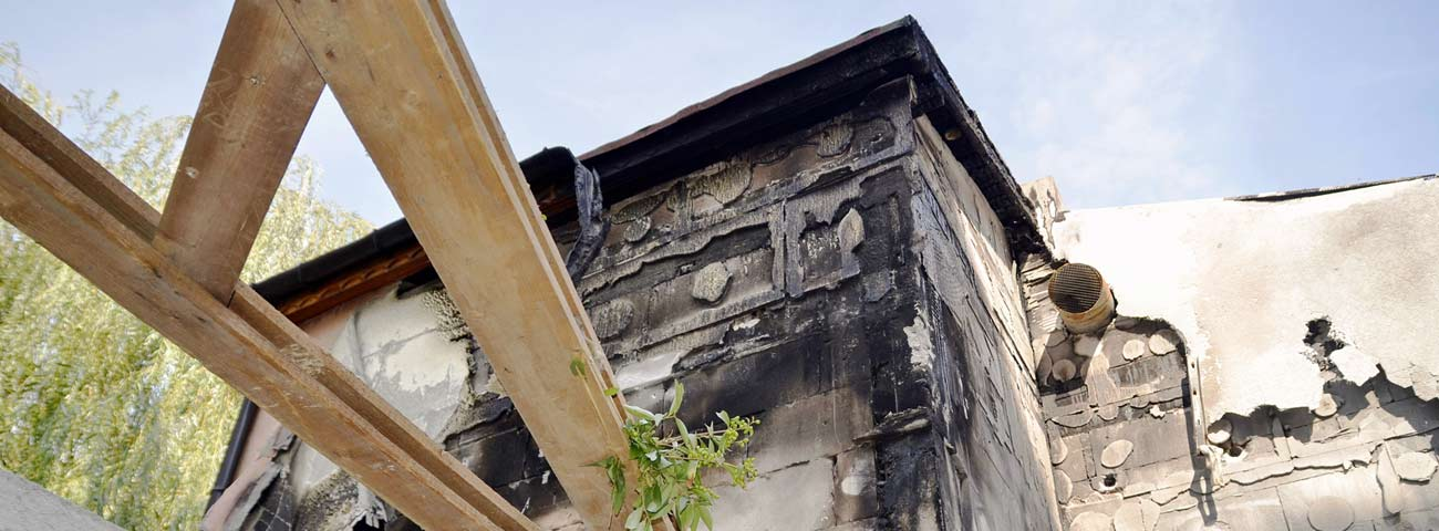 mold damage, mold damage ri,
