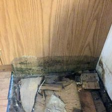mold damage in Cranston, Rhode Island growing on wall