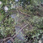 storm damage claim east greenwich ri