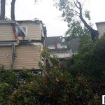tree damage east greenwich