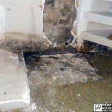 mold growing due to vandalism in Cranston, Rhode Island