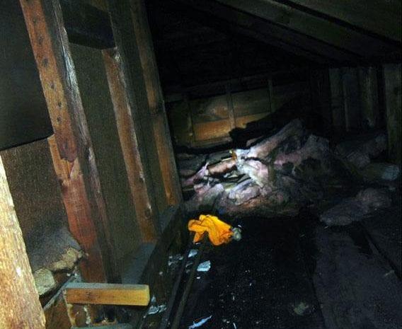 Water Damage in Providence, RI: Leaks, Bursts & Backups