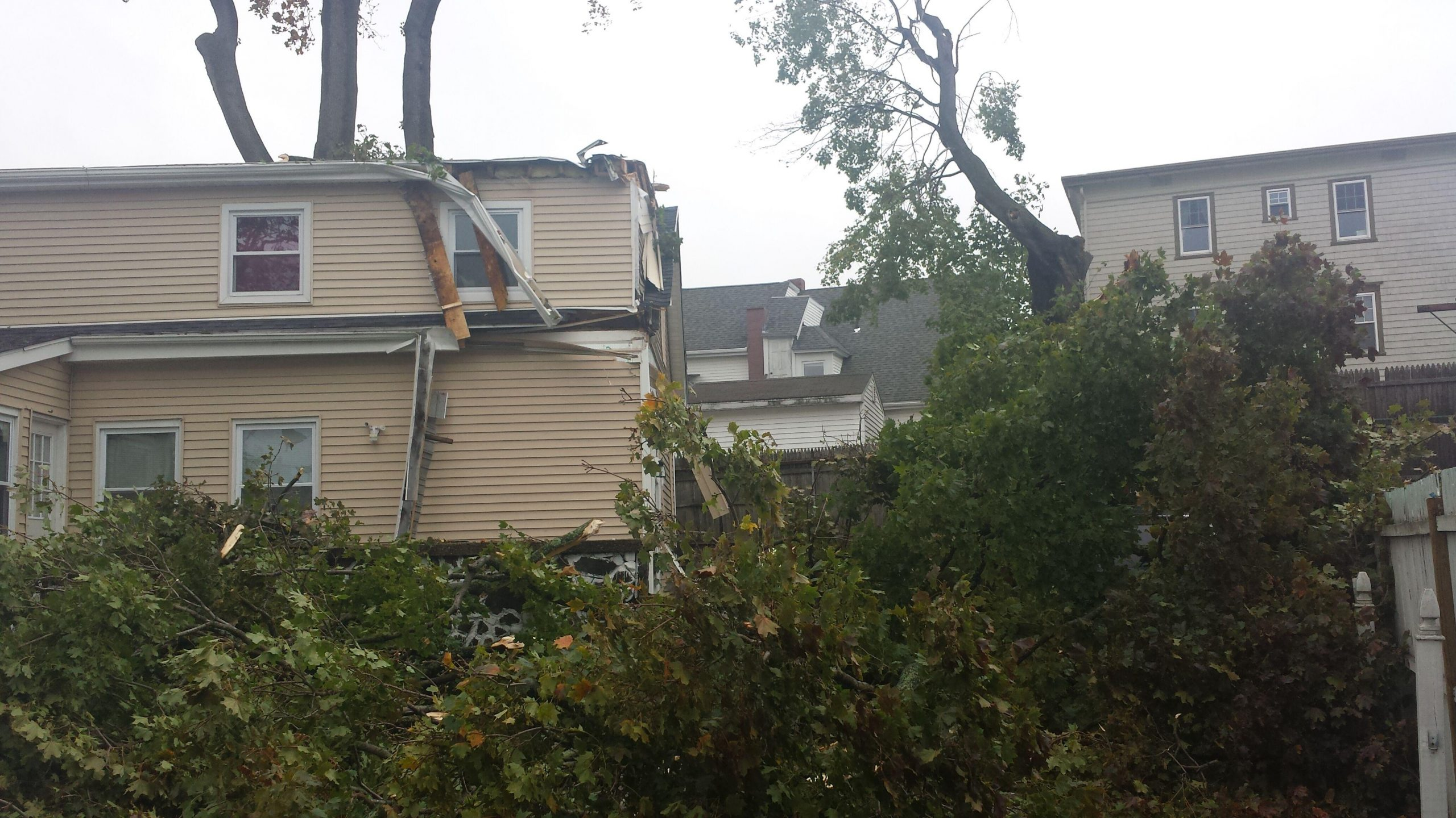 Tree collapsed on home after heavy wind