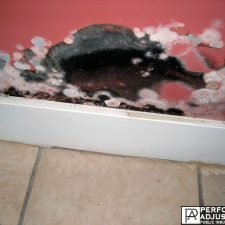 do you have mold damage? Mold damage restoration in central falls, ri