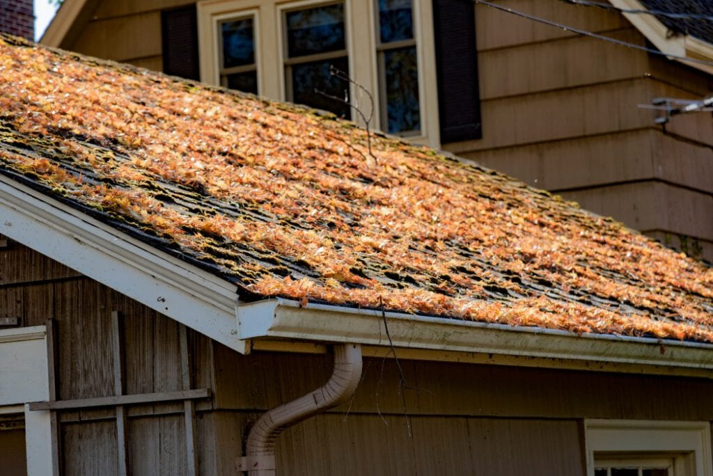 Leaf covered roof and gutters