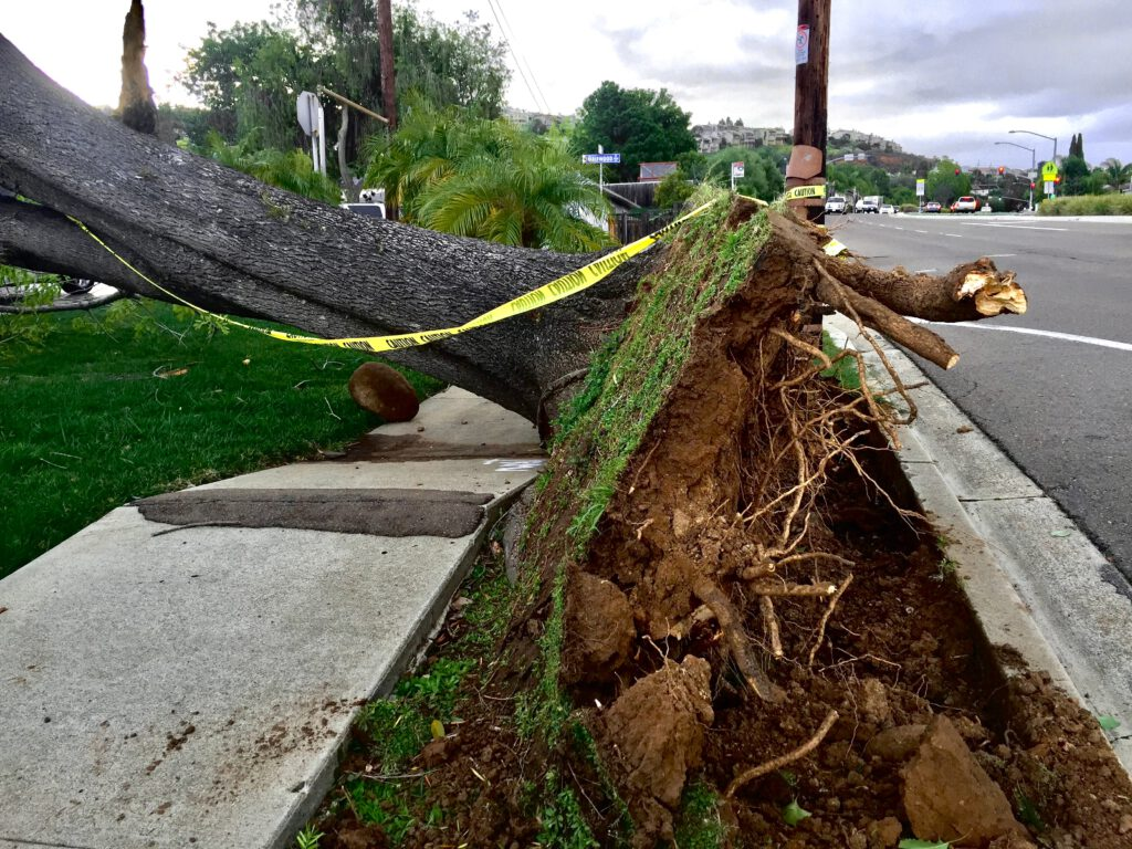 homeowners insurance wont cover natural disasters