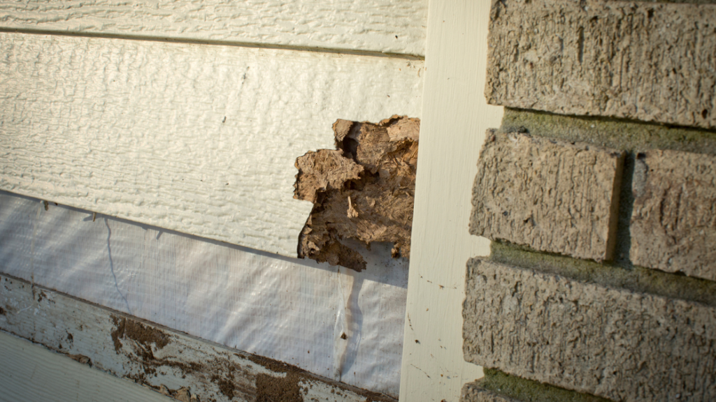 how matching coverage will repair damage to siding in the case of a disaster
