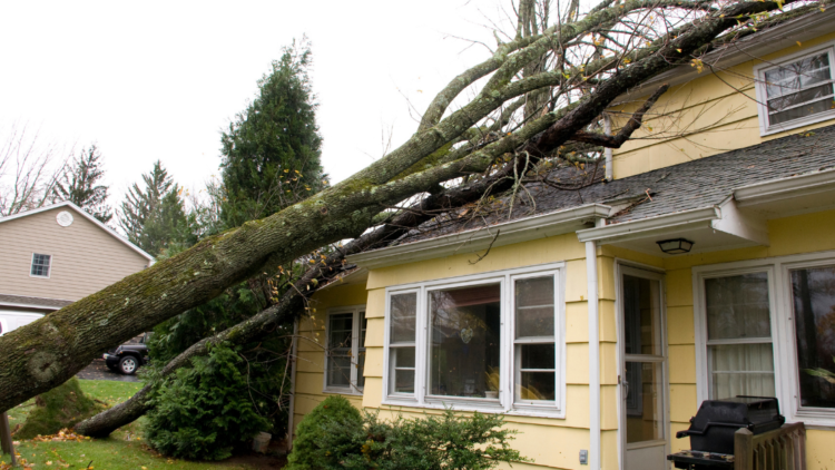 4 Common Homeowners Insurance Claims During The Summer