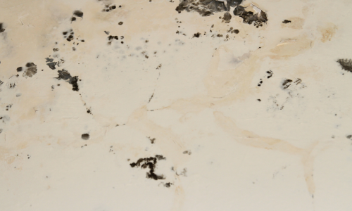 mold damage on the ceiling of a home in rhode island. Public adjuster in Jamestown, RI