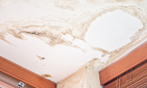 water damage on ceiling of a home in rhode island that needs repair fast. Hire a Public adjuster in Jamestown, RI
